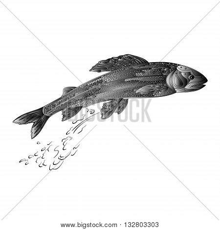 Grayling salmon predatory fish as wrought metal vintage vector illustration