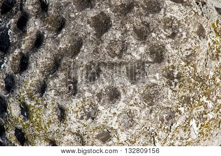 Moss Covered Dimpled Surface Grunge Background
