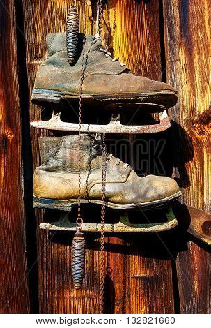 antique old style retro object assemblage on a wooden wall, rustic stile. Old skates