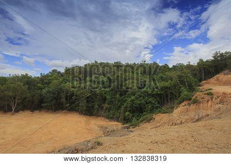 Deforestation environmental destruction Borneo rain forest cleared for construction