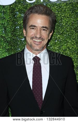 LOS ANGELES - JUN 2:  Dermot Mulroney at the 4th Annual CBS Television Studios Summer Soiree at the Palihouse on June 2, 2016 in West Hollywood, CA