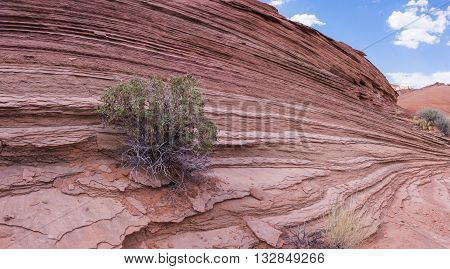 Wall Of Rock Layers