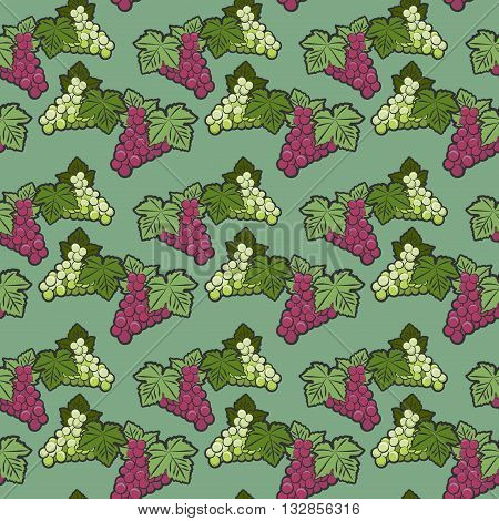 Seamless color pattern grappe theme, vector illustration