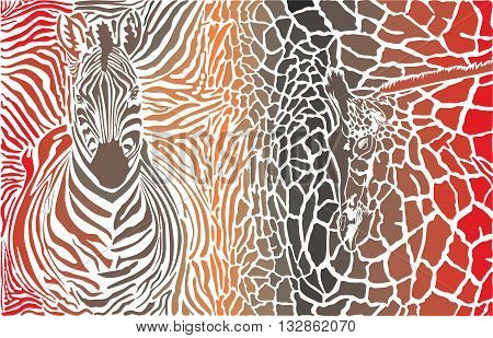 vector illustration background of zebra and giraffe