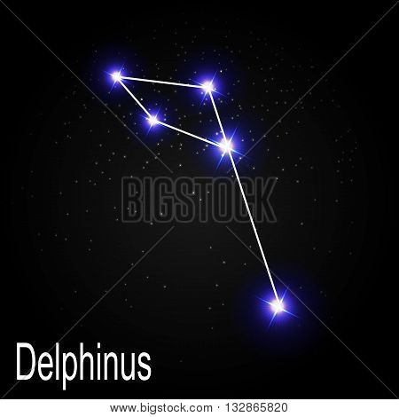 Delphinus Constellation with Beautiful Bright Stars on the Background of Cosmic Sky Vector Illustration EPS10