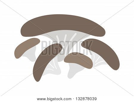 Mushrooms Illustration isolated on white background. Mushrooms vector illustrations. Mushrooms symbol isolated. Mushrooms organic nature. Mushrooms isolated vector