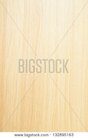 Texture of wood wall used for background