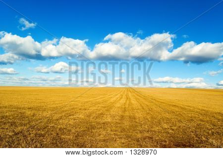 the autumn landscape on background beautiful blue sky. poster
