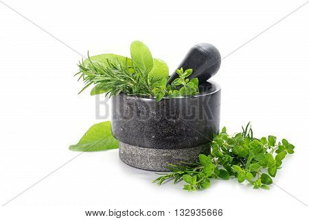 mortar from black granite with fresh herbs oregano rosemary and sage isolated on a white background copy space selected focus narrow depth of field