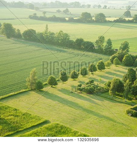 tidy square - view over the early summer green fields from the air; East Anglia; UK poster