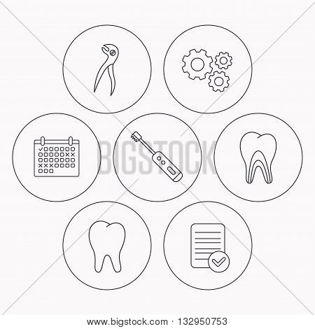 Tooth, electric toothbrush and pliers icons. Dentinal tubules linear sign. Check file, calendar and cogwheel icons. Vector