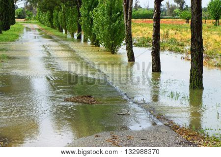 Flooded fields after torrential rain - concept image