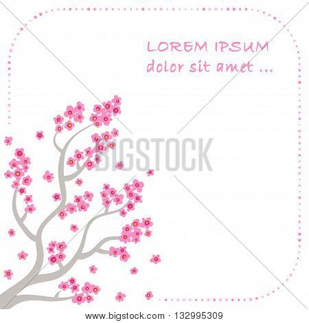 Sakura blossom - Japanese cherry tree with flying petals isolated on white background