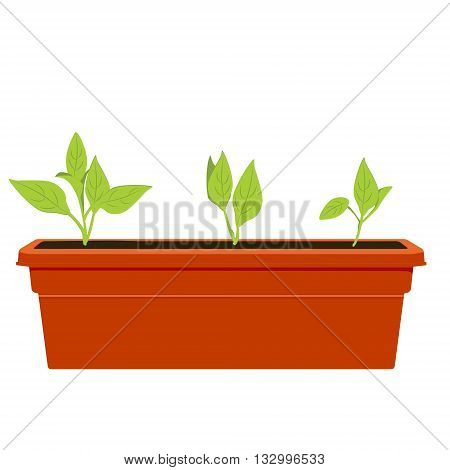 Vector illustration flower pot. Flowers plants growing in a pot. Potted plant icon. Little plant seedling. Seedling icon