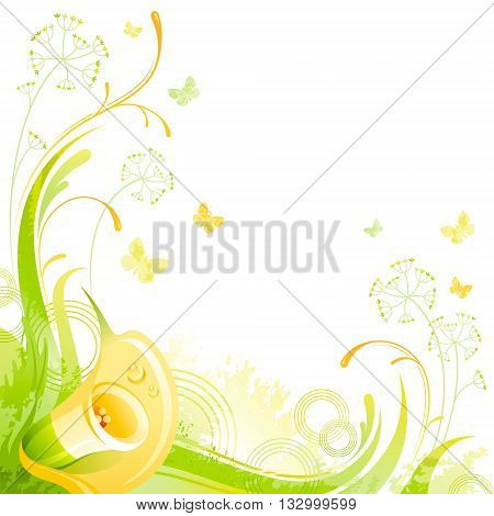 Floral summer background with yellow calla flower, leafs, grass and grunge elements, copy space for your text