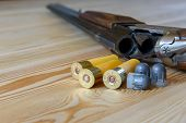 hunting rifle and ammunition, bullets, buckshot and capsule poster