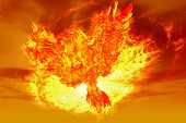 phoenix rising from the ashes in the form of fire poster
