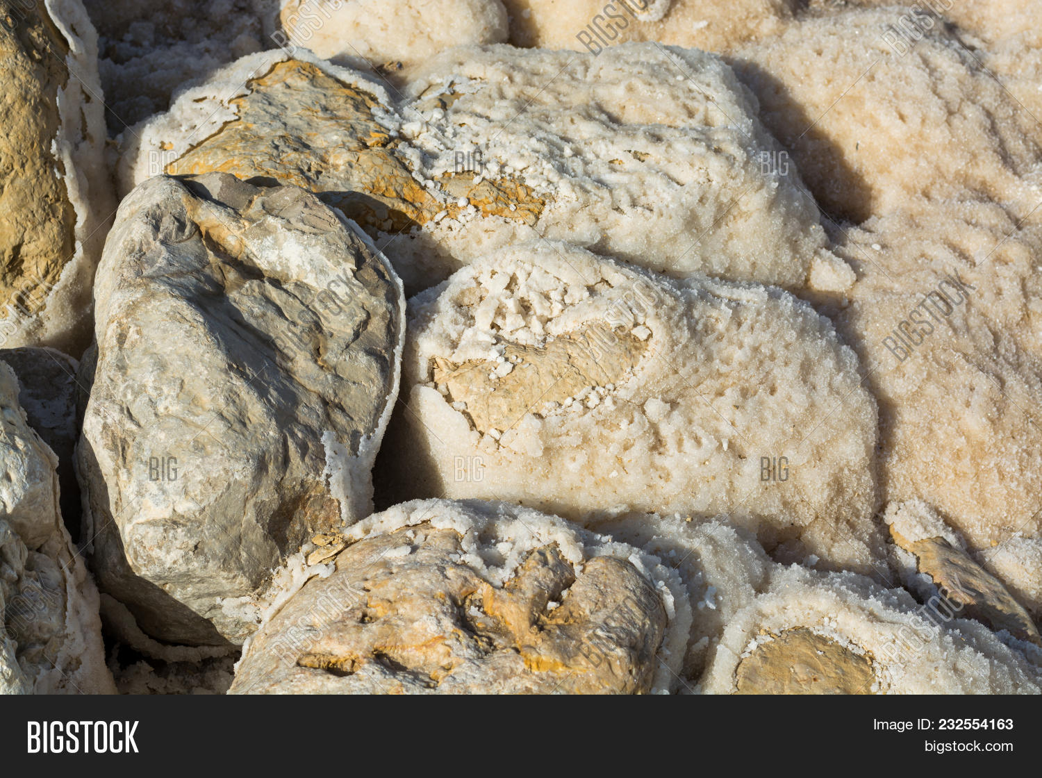 Salt Dead Sea, Israel Image & Photo (Free Trial) | Bigstock