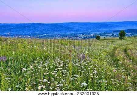 Summer Evening Landscape Over Hills And Flowering Meadow - View From Top Of Hill With Road Among Flo