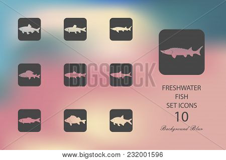 Freshwater Fish. Set Of Flat Icons On Blurred Background. Vector Illustration
