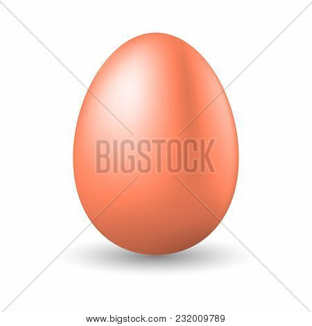 Realistic Brown Egg On White Background. Vector Illustration