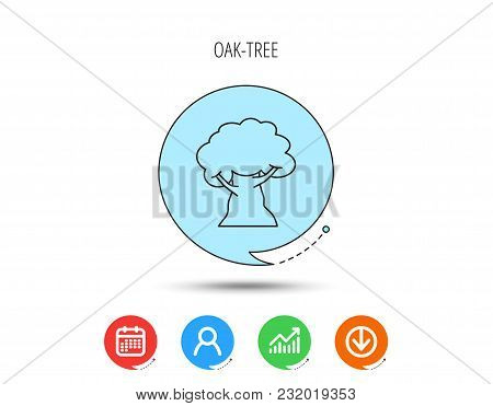 Oak Tree Icon. Forest Wood Sign. Nature Environment Symbol. Calendar, User And Business Chart, Downl