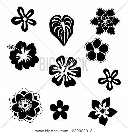 Tropical Flowers Silhouette Elements Set Isolated On White Background. Vector Illustration In Black