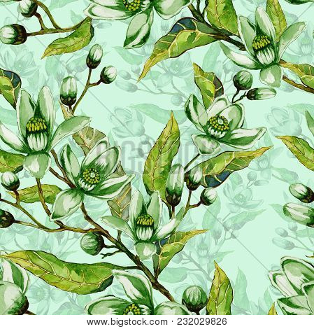 Tree Flowers On A Twig. Springtime Seamless Pattern. Spring Flourish. Light Green Background With Co