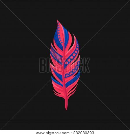 Beautiful Bright Abstract Colored Feather Vector Illustration Isolated On A Black Background.
