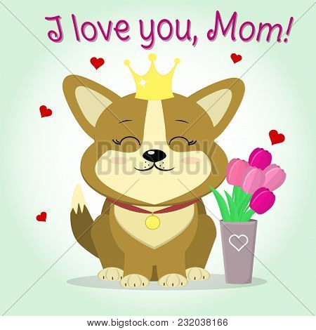 Puppy Corgi Sits Next To A Vase With Pink Tulips, Cartoon Style. Congratulations. Happy Mother's Day