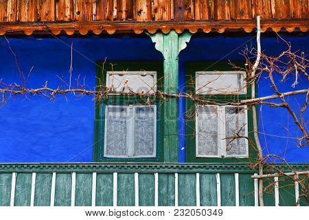 Porch, veranda with painted blue wall and vine vines poster