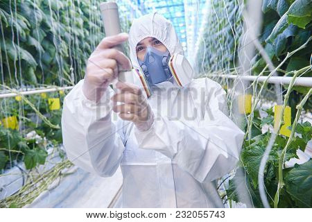 Waist Up Portrait Of Plantation Worker Wearing Protective Hazmat Suit And Mask In Greenhouse Of Mode
