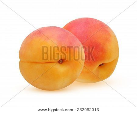 Apricot Isolated On A White Background. Two Whole Fruit With The Shadows.