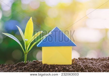 Paper House Origami And Plant Growing From Soil Against Blurred Green Natural Background With Copy S
