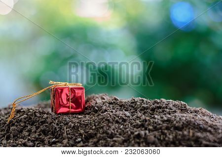 Red Gift Box On Soil Against Blurred Natural Green Background With Copy Space