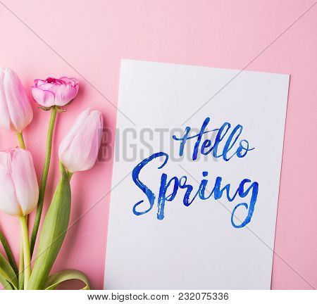 Hello Spring Phrase And Colorful Flowers On A Pink Background. Studio Shot. Flat Lay.