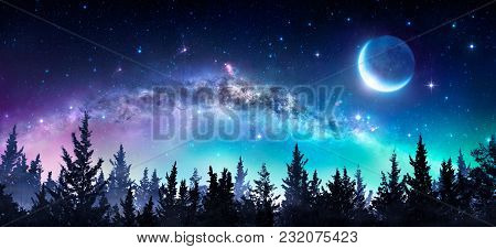 Milky Way And Moon In Night Forest