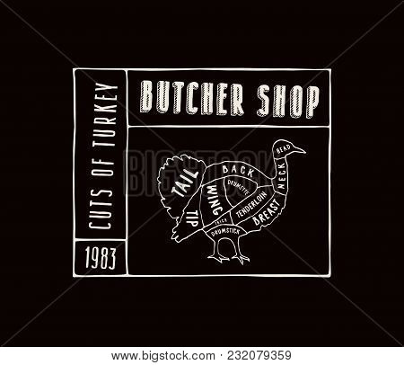 Stock Vector Turkey Diagram In The Style Of Handmade Graphics. Label Template For Butcher Shop. Whit