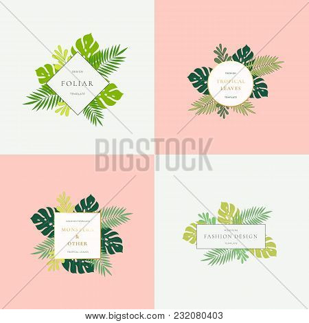 Set Of Monstera Tropical Leaves Fashion Signs Or Logo Templates. Abstract Foliage With Golden Border