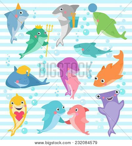Shark Vector Cartoon Seafish Smiling With Sharp Teeth Illustration Set Of Fishery Character Of Frien