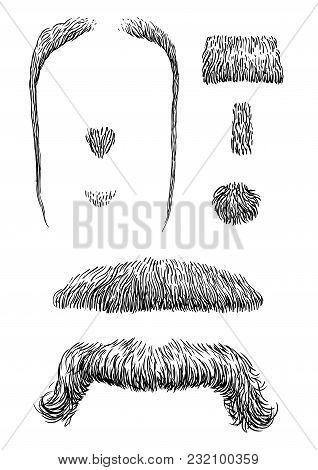 Moustache Illustration, Drawing, Engraving, Ink, Line Art