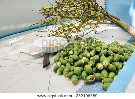Palm Fox Tail Raw Fruit Remove The From The Bouquet From My Garden Prepraring For Dessert Cook With