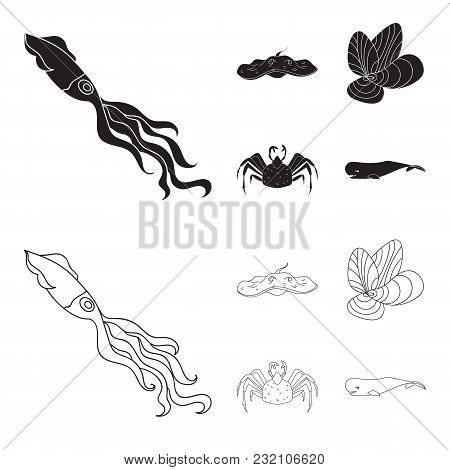 Electric Ramp, Mussels, Crab, Sperm Whale.sea Animals Set Collection Icons In Black, Outline Style V