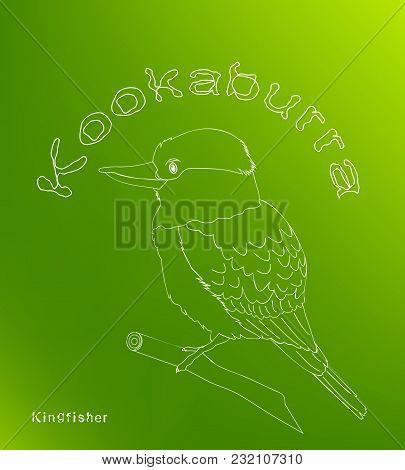Laughing Bird. Australian Kookaburra. Green Background. Fly