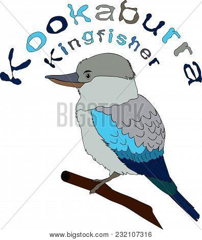 Laughing Bird. Australian Kookaburra. Postcard, Eco Logo, Emblem, Icon...