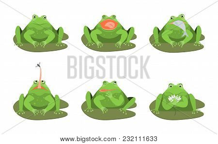 Cartoon Cute Green Frogs Characters Icon Set Comic Toad Concept Flat Design Style. Vector Illustrati