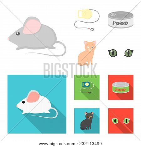 Mouse, Pet Leash, Pet Food, Kitten. Cat Set Collection Icons In Cartoon, Flat Style Vector Symbol St