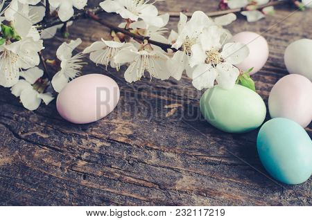 Easter Eggs Painted In Pastel Colors With Spring Cherry Blossom On Old Rustic Wooden Background With