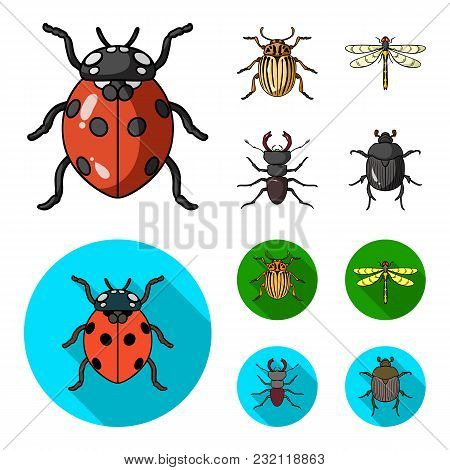 Insect, Bug, Beetle, Paw .insects Set Collection Icons In Cartoon, Flat Style Vector Symbol Stock Il