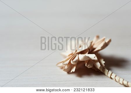 closeup of a traditional spanish braided palm to be blessed on Palm Sunday on a white rustic wooden surface with a blank space on the left